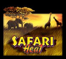 ทดลองเล่น Safari Heat